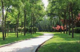 明年郑州将新添一座 郑韩故城特色遗址公园