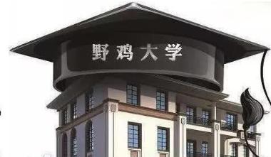 """""""野鸡大学""""年年""""抱窝"""" 监管莫止于曝光"""