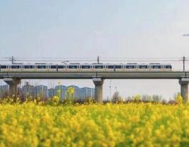 8月1日起 郑州地铁部分车站自动售票机将关停现金购票功能