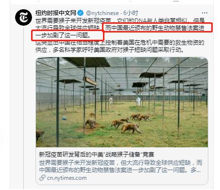 """奇了,美媒又扣大锅:中国""""闭关锁猴""""影响全球抗疫……"""